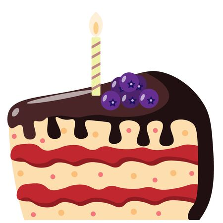 chocolate cake with a candle and blueberries