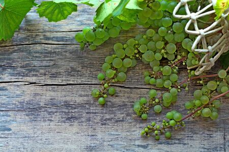 Green grapes with leaves in a basket lying on a wooden background. Side view. Copy space. Stockfoto