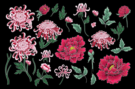 Vector hand draw seamless pattern of chrysanthemum and peonies. Vettoriali