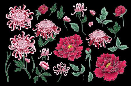 Nahtloses Muster des Vektorhandabgehobenen betrages von Chrysantheme und von Pfingstrosen. Standard-Bild - 89098874
