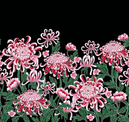 Set of botanical flowers chrysanthemum. Vector hand draw golden-daisy illustration
