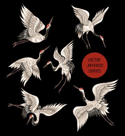 Japońskie białe żurawie w różnych pozach do twojego projektu Ilustracje wektorowe