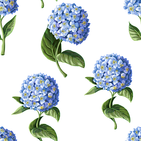 Seamless pattern with Hortensia on a white background.