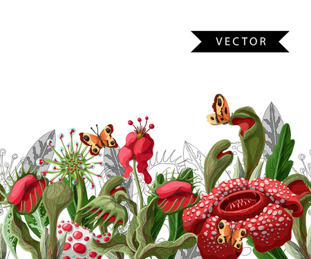 Seamless border with plant predators flowers such as Venus flycatcher, sundew and  other. Illustration