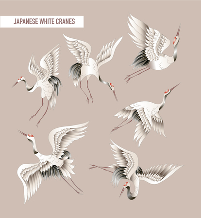 Japanese white crane in batik style. Vector