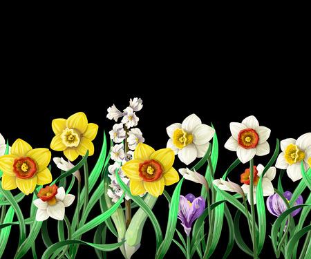 Border with daffodils and wild flowers. Ilustracje wektorowe