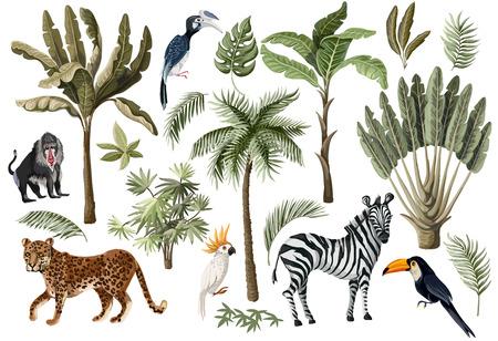 Tropische Baumelemente wie Palmen, Bananen und Dschungeltiere isoliert.