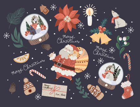 Christmas decor such as fir branch, glass ball, poinsettia, pine cones and more. Vector flat illustration.