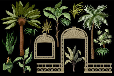 Tropical trees and windows, door openings in a garden style. Trendy interior elements isolated.