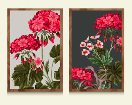 Botanical geraniums and wild flowers within the framework. Vector