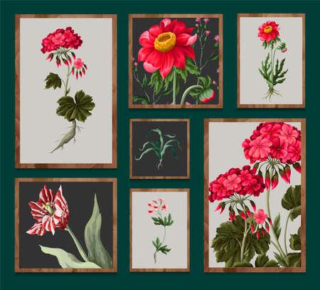 Botanical geraniums and wild flowers within the framework. Vector Vektorgrafik