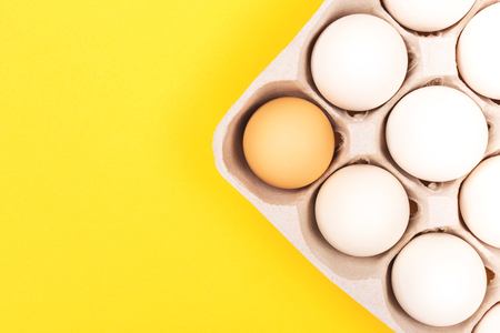 Chicken eggs in egg carton on yellow background. All eggs are white, one is orange. Minimal composition. Flat lay, top view. Copy space for your text.