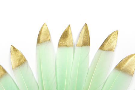 Mint green feathers with gold glitter on white background