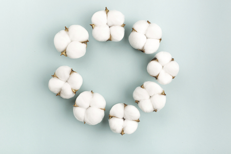 Cotton flower heads