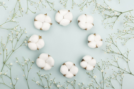 A wreath made from cotton flowers on light green background. Nature and spring concept. Flat lay, top view. Copy space for your text.