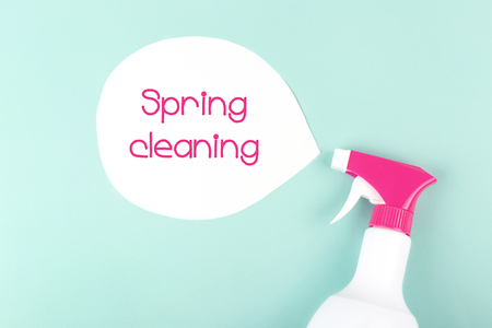 Spray and spring cleaning sign on light green background. Trendy toning. Flat lay, top view. Copy space for your text. Stok Fotoğraf - 123439963