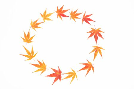 A wreath made from Japanese maple leaves. Hello autumn concept. Flatlay, top view. Copy space for your text. Stok Fotoğraf - 131781741