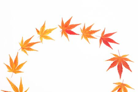Half wreath made from Japanese maple leaves. Hello autumn concept. Flatlay, top view. Copy space for your text.