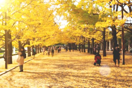 Autumn composition. Defocused park with bright yellow leaves and people. Enjoy autumn season. Stock fotó
