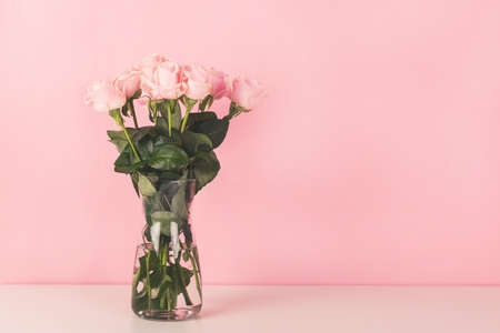 The vase with beautiful roses on pink background.