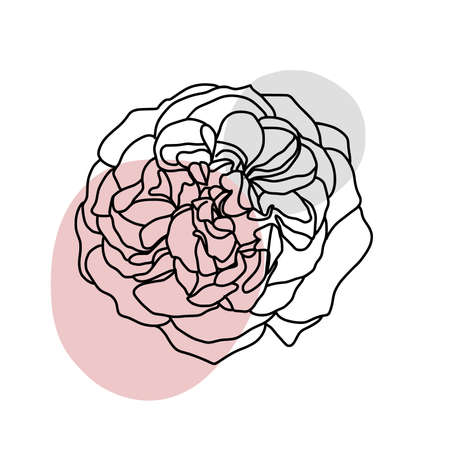 Abstract one line peony flower. Botanical contour drawing. Organic shape backgroud. Modern minimal art illustration. Elegant continuous line poster for Scandinavian style interior.