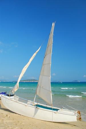 Sailing on the sea and the sea background photo
