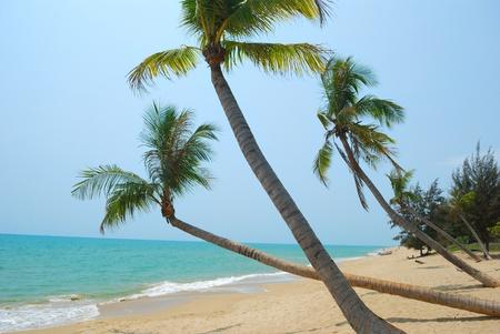 Sanya, Chinas beautiful scenery of the beach photo