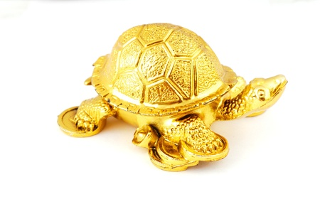 ancient turtles: Golden mascot isolated on a white background