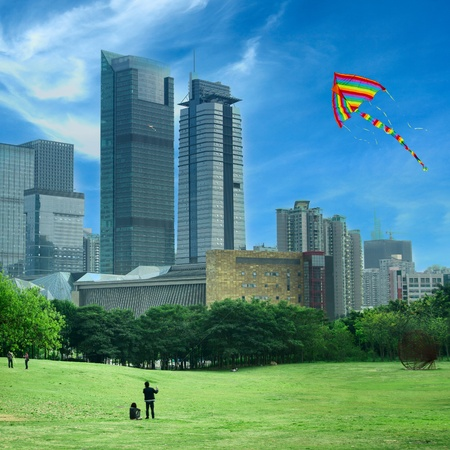 flying kites in the park photo