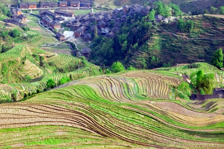 The rice terraces in China Stock Photo - 13756499