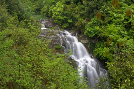 Deep forest Waterfall in china,guilin photo