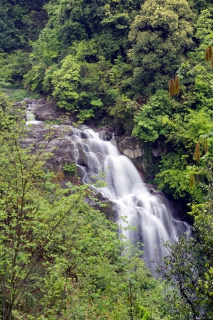 Deep forest Waterfall in china,guilin Stock Photo - 13762796