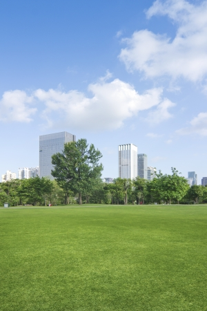 city park with modern building background photo