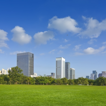 City park under blue sky with Downtown Skyline in the Background photo