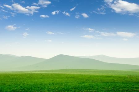 Summer grass field and sunlight in blue sky