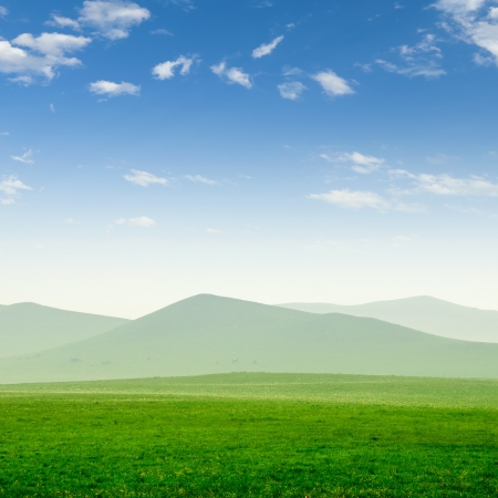 Summer grass field and sunlight in blue sky Stock Photo - 14660138