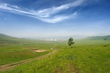 Country road through the green grassland photo