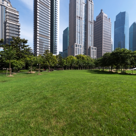 The grass and the city in shanghai,china