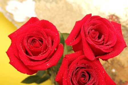 Three red roses with water drops on them. Happy Mothers Day. Valentines day holiday. Stok Fotoğraf