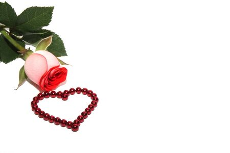 A rose and a heart made of red magnetic beads. Concept of love and Valentines day. Greeting card. Happy birthday. Copy space.