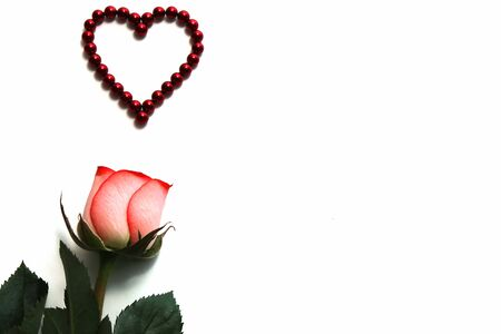 Natural rose and a heart made of red magnetic beads. Concept of love and Valentines day. Greeting card. Happy birthday. Copy space.