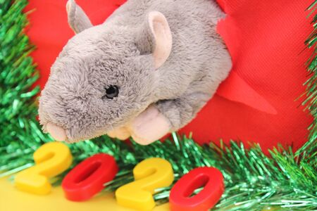 Gray Toy Rat is looking through the ragged hole. Number of the New Year 2020. Chinese calendar. year of rat. Stok Fotoğraf - 132360755