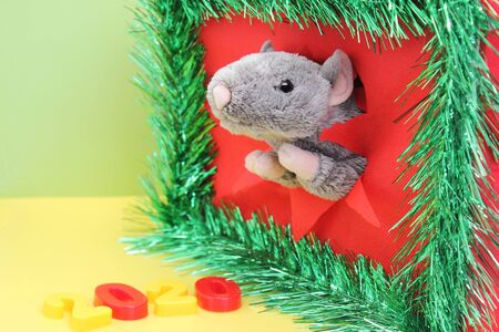 Gray Toy Rat is looking through the ragged hole. Number of the New Year 2020. Chinese calendar. year of rat. Stok Fotoğraf - 132124616
