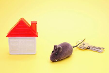 Toy mouse-a symbol of The new year 2020, next to a plastic toy house and real keys to the house on a yellow background. The concept of buying property in the new year 2020.
