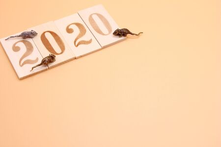 Number 2020 lined with wooden figures and three little metal mice on it. Symbol of the new year 2020 on the Chinese calendar. Copy space. Stok Fotoğraf - 133454085