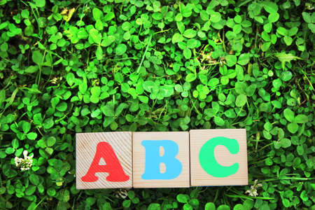 The red letter A, blue letter B, and green letter C are depicted on childrens wooden blocks. Cubes with English letters lie in a clearing on the bright green green grass . Learning foreign language. Stok Fotoğraf