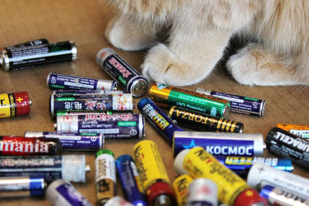 Vladivostok, Russia - 5 November, 2020: A red cat is sitting next to a pile of old used batteries from different brands. Part of a red cat. Front paws of a cat. Concept of ecology and recycling.