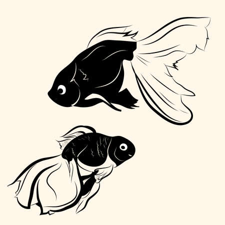 Graphic vector illustration with the image of goldfish.
