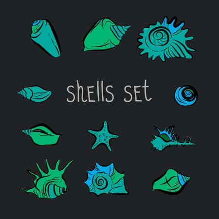 Set of vector images of shells.