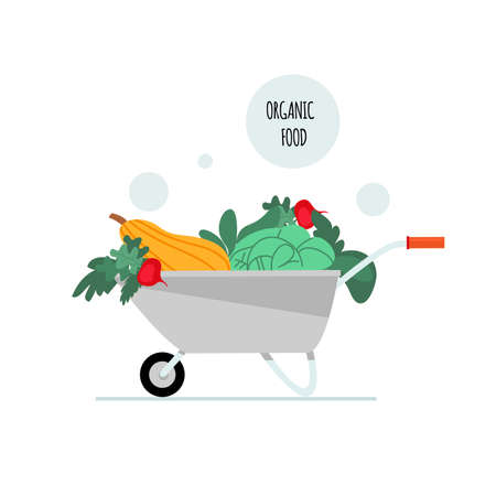 Wheelbarrow with vegetables. The concept of healthy organic food. Vector illustration in a flat style. Isolated on a white background.